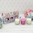 """Набор свечи стаканы в коробке домик """"Цветущего настроения"""", 3 свечи, 16 х 11 см"""