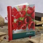 Фотоальбом магнитный 10 листов Image Art  серия 185 цветы 23х28 см МИКС