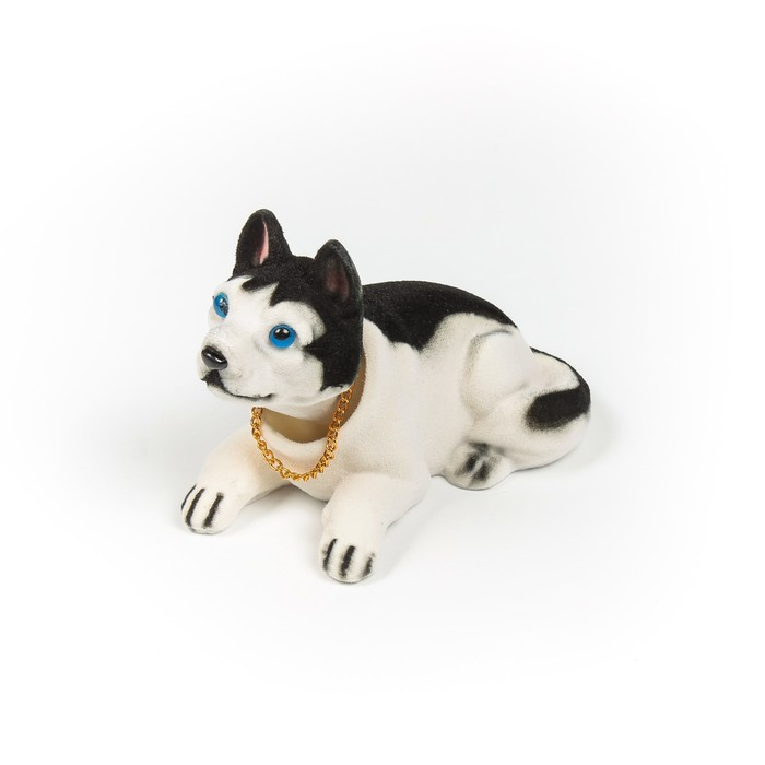 Собака на панель авто, качающая головой, черно-белый окрас