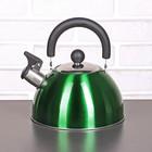 Чайник со свистком 2 л «Грин. блеск», цвет зелёный - фото 282121748