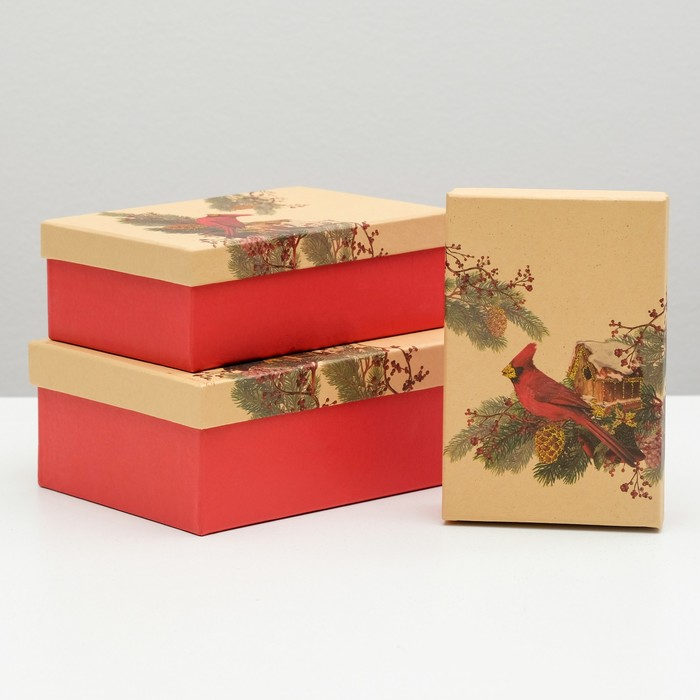 """Набор коробок 3 в 1 """"Красный кардинал"""", 22 х 16 х 8.5 - 18 х 12 х 5.5 см"""