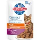 Влажный корм Hill's Cat для кошек, говядина кусочки в соусе, пауч, 85 г