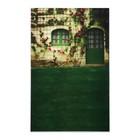 """Фотофон винил """"Зелёная дверь"""" стена+пол 80х125 см"""