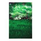 """Фотофон винил """"Зелёная лужайка с ромашками"""" стена+пол 80х125 см"""