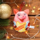 "Keychain antistress suction Cup ""wish Fulfillment"" piggy, 11 cm"