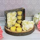 """Подарочный набор """"С заботой любимому учителю!"""": мыльные лепестки, 6 шт. и мыло в форме пирожного, 3 шт."""