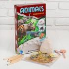 """Набор для проведения раскопок """"Животные"""" раскраска + 6 цветов карандашей"""