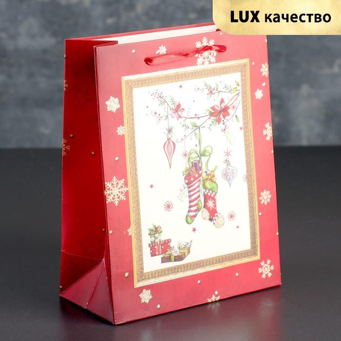 Пакет подарочный люкс, 18 х 9 х 23 см