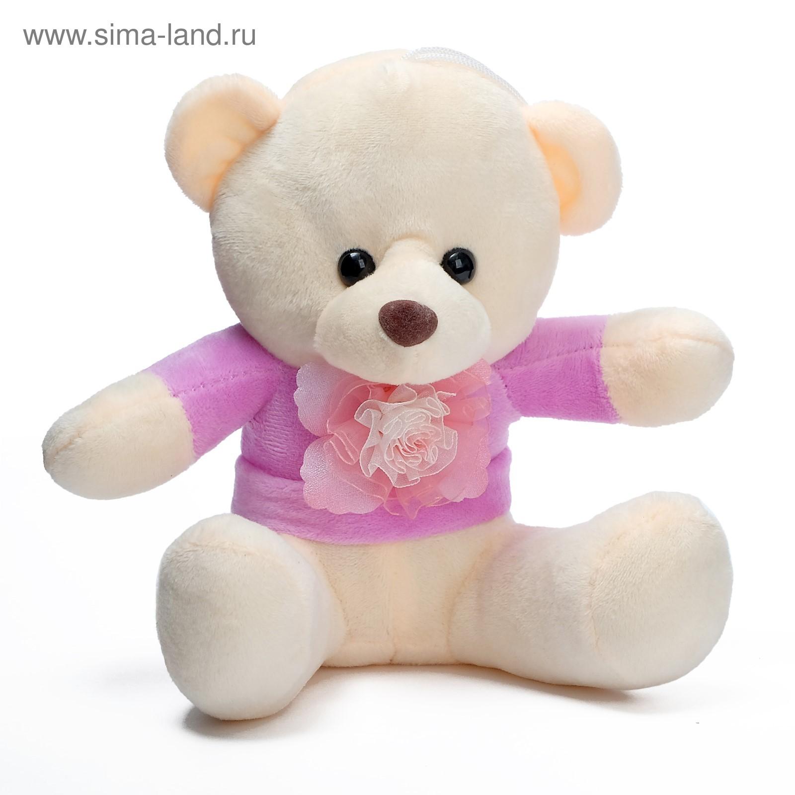 Медвежьи лапки цветок