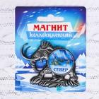 """Магнит в форме мамонта """"СЕВЕР"""" (северное сияние), 6,3 х 5 см"""