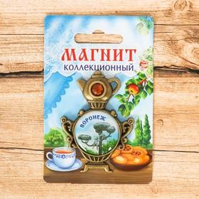 Магнит в форме самовара «Воронеж» (кот с ул. Лизюкова), 4,4 х 6,1 см Ош