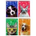 Блокнот А6, 40 листов на гребне Calligrata «Домашние животные 2», обложка мелованный картон