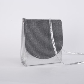 Bag for women, the division for magnet, long strap, color silver
