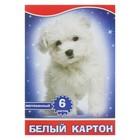 """Картон белый А4, 6 листов """"Белый щенок"""", мелованный"""