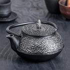 Чайник с ситом «Хрома», 600 мл