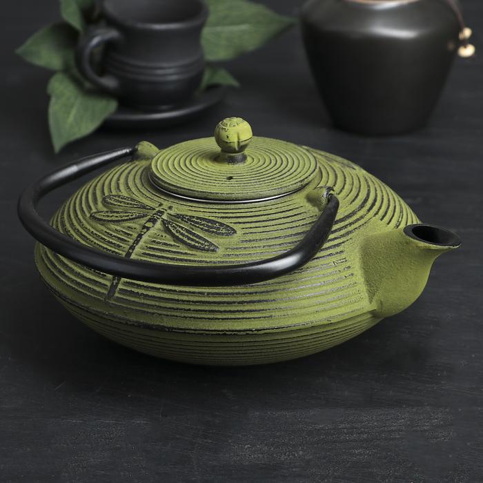 Чайник с ситом 800 мл «Стрекоза»