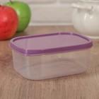Контейнер пищевой 500 мл, цвет фиолетовый