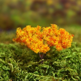 "Dollhouse miniature, 2 PCs set ""Tree"" size 1 PCs 2*2*6,5 cm, colour orange-yellow"