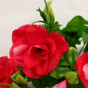 "A bouquet of ""Roses"" 5*27 cm, mix"