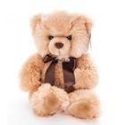 """Мягкая игрушка """"Медведь"""", 30 см"""