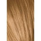 блондин шоколадно-натуральный