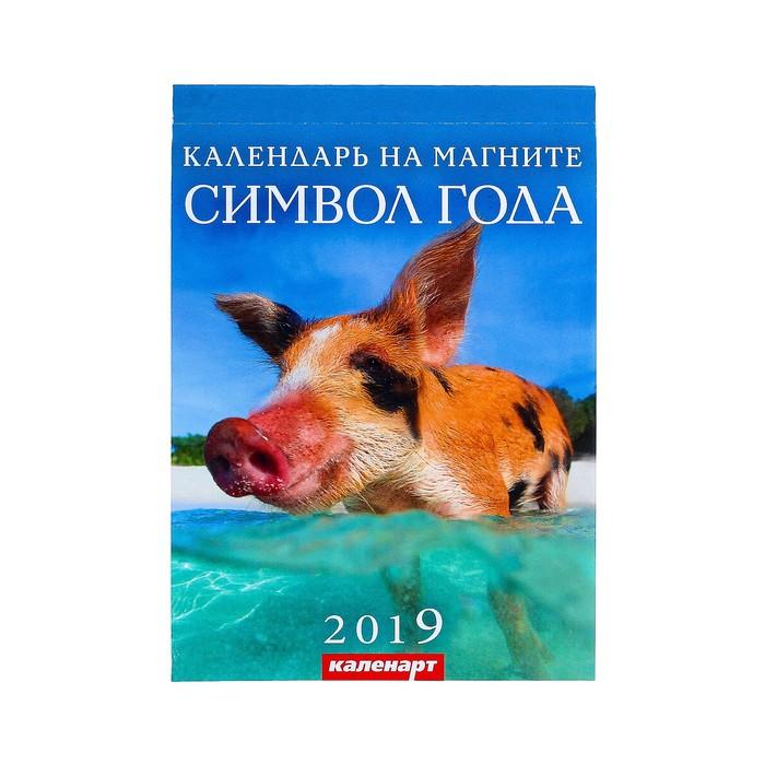 """Календарь отрывной на магните  """"Символ года - 2"""" 2019 год, 9,6х15,3см"""