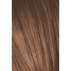 Краситель для волос Igora Absolutes Age Blend 7-710 Средний русый, Медный сандрэ, 60 мл