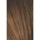 Краситель для волос Igora Absolutes 6-60 Темный русый, Шоколадный натуральный, 60 мл