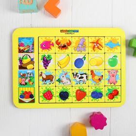 Игра настольная «Ассоциации: ягоды, животные, фрукты»