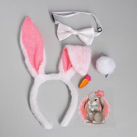 """Accessories carnival for girls """"Bunny"""", set: bezel-lugs, the iron-on transfer, ponytail, butterfly, brooch"""