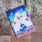 Обложка на паспорт «СЕВЕР» (мишка). 9.5 х 14 см