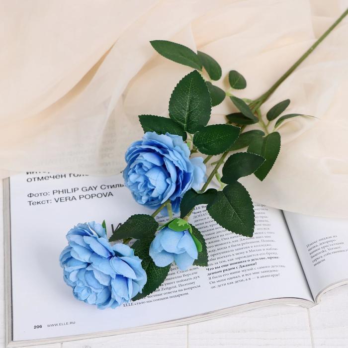 """Цветы искусственные """"Роза терция"""" 8*60 см, голубой - фото 1692598"""