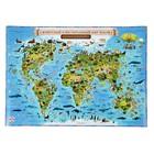Карта Мира д/детей Животный и растительный мир Земли 59*42 без ламинации НК039