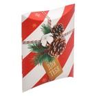 Коробка сборная фигурная «Для тебя в Новый год», 19 × 14 × 4 см