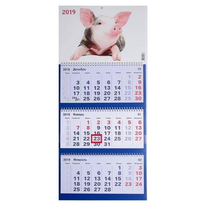 """Календарь квартальный, трио """"Символ года - 3"""" 2019 год, 31х69см"""