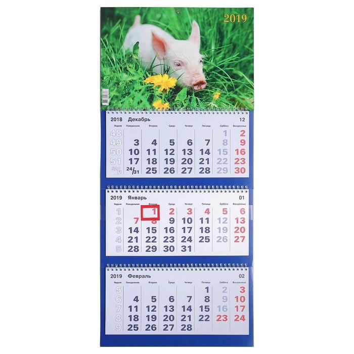 """Календарь квартальный, трио """"Символ года - 5"""" 2019 год, 31х69см"""