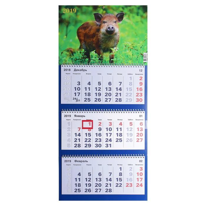 """Календарь квартальный, трио """"Символ года - 6"""" 2019 год, 31х69см"""