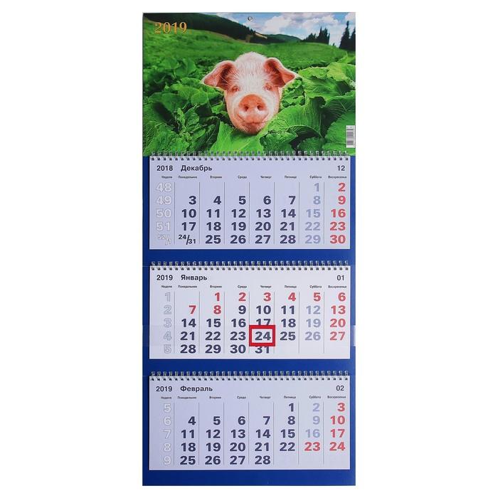 """Календарь квартальный, трио """"Символ года - 9"""" 2019 год, 31х69см"""