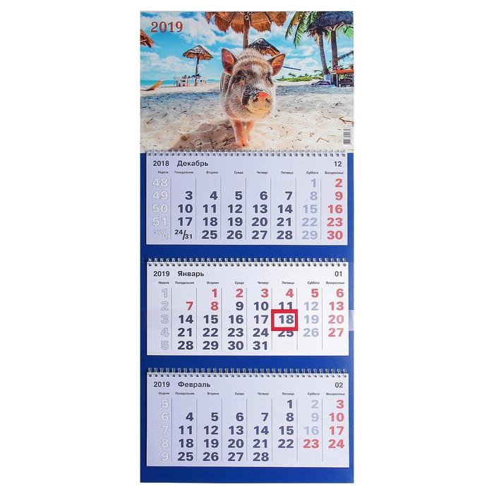 """Календарь квартальный, трио """"Символ года - 10"""" 2019 год, 31х69см"""