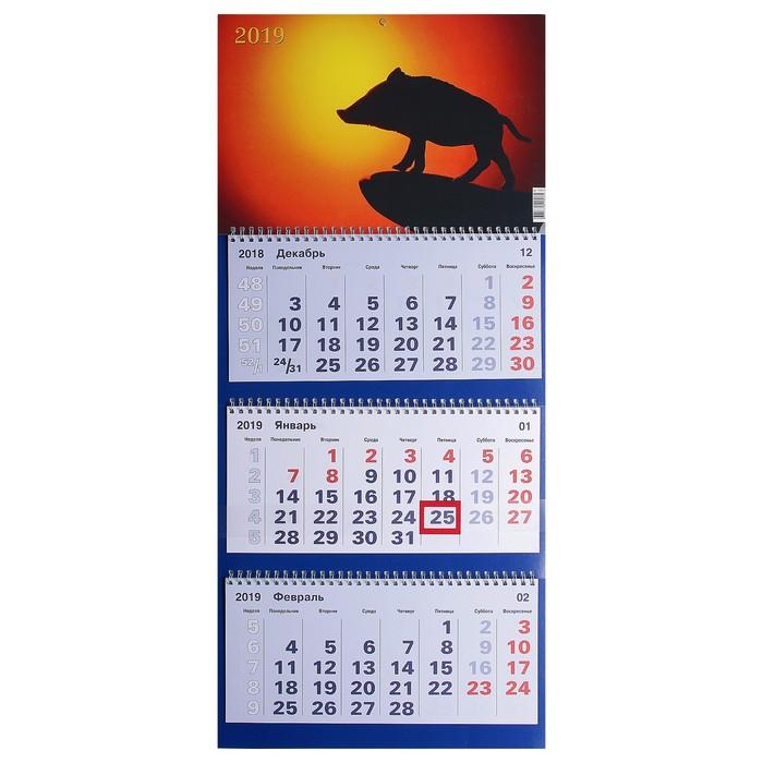 """Календарь квартальный, трио """"Символ года - 13"""" 2019 год, 31х69см"""