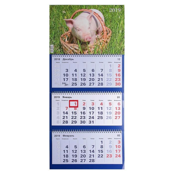 """Календарь квартальный, трио """"Символ года - 14"""" 2019 год, 31х69см"""