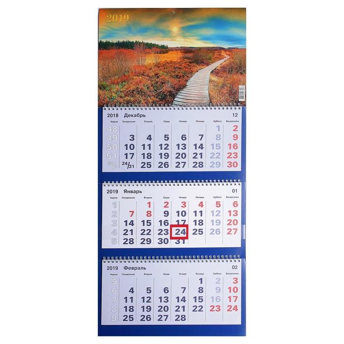 """Календарь квартальный, трио """"Природа - 12"""" 2019 год, 31х69см"""