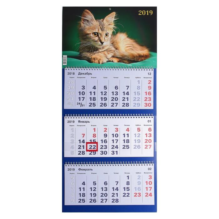 """Календарь квартальный, трио """"Кошки - 1"""" 2019 год, 31х69см"""
