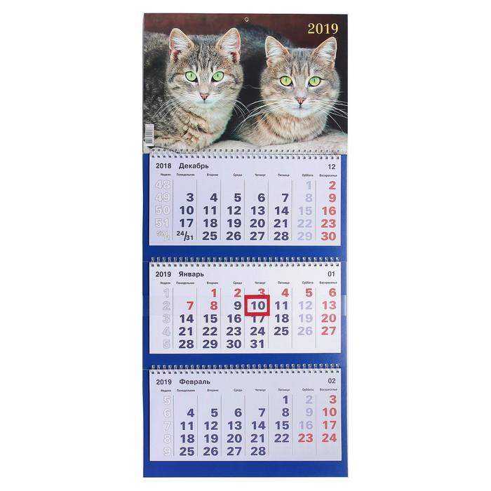 """Календарь квартальный, трио """"Котята - 1"""" 2019 год, 31х69см"""