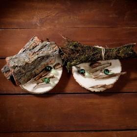 Набор для творчества «Эко-3»: спилы ясеня, кора, мох сфагнум, моховые палочки, яшма