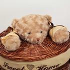 Корзина универсальная плетёная с крышкой Доляна «Медвежонок», 36×36×40 см, цвет коричневый - фото 105493241