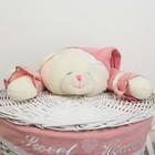 """Корзина универсальная, плетёная, круглая """"Медвежонок розовый"""" - фото 105493255"""