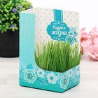 """Greeting card with growing grass """"Every day is a small life"""""""