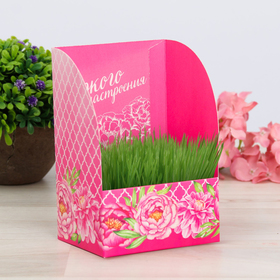 """Greeting card with growing grass """"Bright mood"""""""