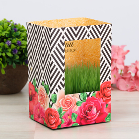 """Greeting card with growing grass """"Dream and inspire"""""""